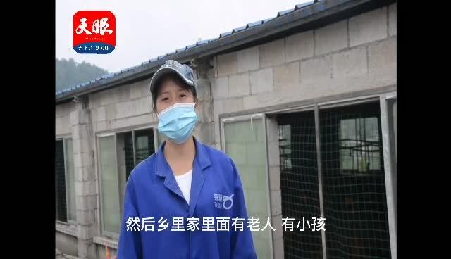 """【贵州农业特色产业微纪录】息烽:肉鸡""""啄出""""小康路"""